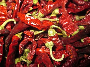 100g Bag of Short Dried Chillies Wreath Making Pot Pourrie